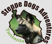 Steppe Dogs Adventures - Tanzania